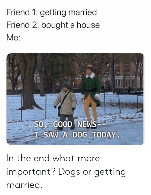 A House: Friend 1: getting married  Friend 2: bought a house  Mе:  S0, GOOD NEWS  I SAW A DOG TODAY.  EX In the end what more important? Dogs or getting married.