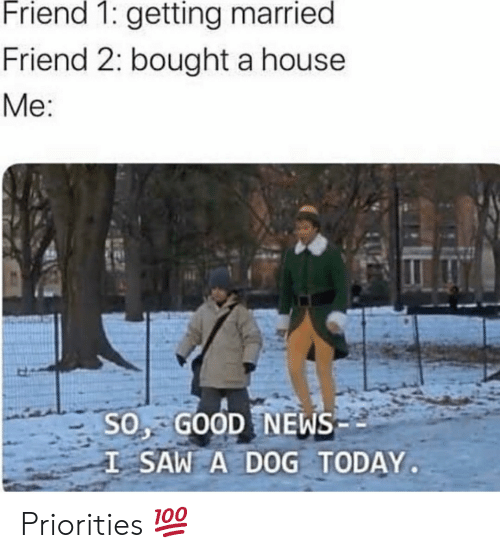 Priorities: Friend 1: getting married  Friend 2: bought a house  Me:  SO, GOOD NEWS  I SAW A DOG TODAY Priorities 💯