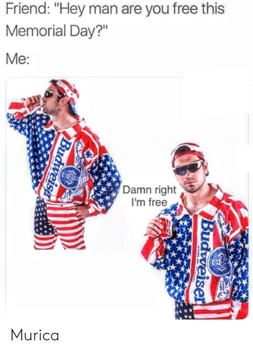 "Free, Memorial Day, and Friend: Friend: ""Hey man are you free this  Memorial Day?""  Me  Damn right  I'm free Murica"