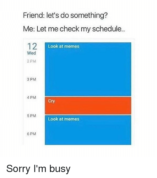 Memes, Sorry, and Schedule: Friend: let's do something?  Me: Let me check my schedule.  12  Look at memes  Wed  2 PM  3 PM  4 PM  Cry  5 PM  Look at memes  6 PM Sorry I'm busy