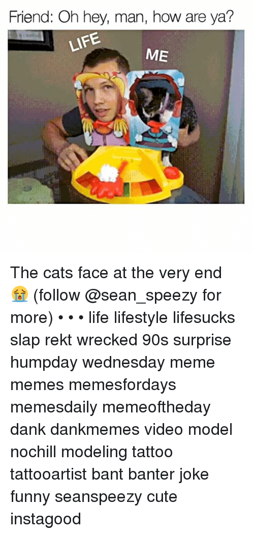 Wednesday Meme: Friend: Oh hey, man, how are ya?  ME The cats face at the very end 😭 (follow @sean_speezy for more) • • • life lifestyle lifesucks slap rekt wrecked 90s surprise humpday wednesday meme memes memesfordays memesdaily memeoftheday dank dankmemes video model nochill modeling tattoo tattooartist bant banter joke funny seanspeezy cute instagood