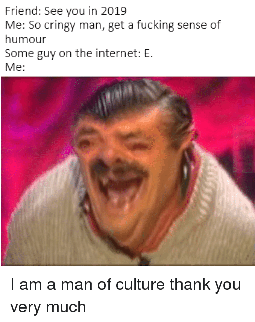 sense of humour: Friend: See you in 2019  Me: So cringy man, get a fucking sense of  humour  Some guy on the internet: E.  Me: I am a man of culture thank you very much