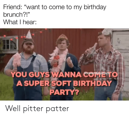 "Party: Friend: ""want to come to my birthday  brunch?!""  What I hear:  YOU GUYS WANNA CO  A SUPER SOFT BIRTHDAY  PARTY?  то  @insertdogehere Well pitter patter"