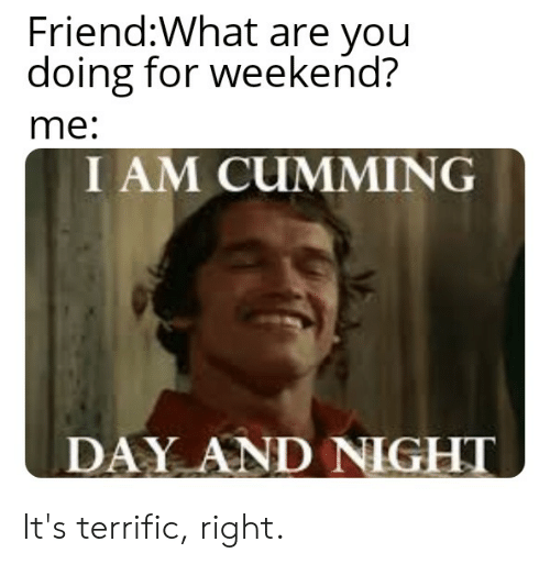 Reddit, Weekend, and Friend: Friend:What are you  doing for weekend?  me:  I AM CUMMING  DAY AND NIGHT It's terrific, right.