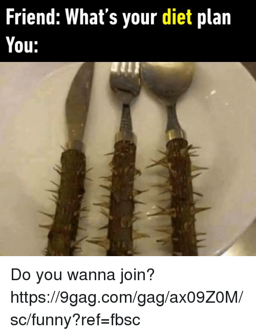 comming: Friend: What's your diet plan  You: Do you wanna join?  https://9gag.com/gag/ax09Z0M/sc/funny?ref=fbsc