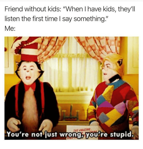 """Youre Stupid: Friend without kids: """"When I have kids, they'll  listen the first time I say something.""""  Me:  @the.nerd.dad  NE AMAZING  You're not fust wrong,you're stupid."""