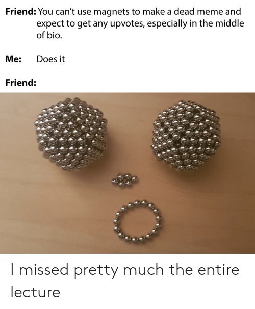 Lecture: Friend: You can't use magnets to make a dead meme and  expect to get any upvotes, especially in the middle  of bio.  Me:  Does it  Friend: I missed pretty much the entire lecture