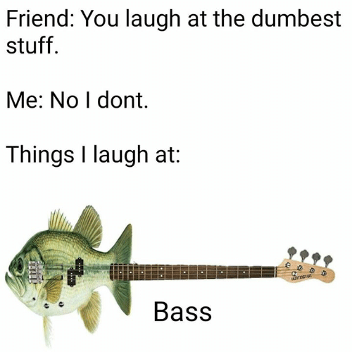 Memes, Stuff, and 🤖: Friend: You laugh at the dumbest  stuff  Me: No I dont,  Things I laugh at:  Bass