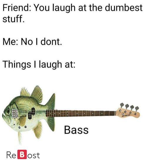 dumbest: Friend: You laugh at the dumbest  stuff.  Me: No I dont.  Things I laugh at:  ee  Bass Re🅱️ost