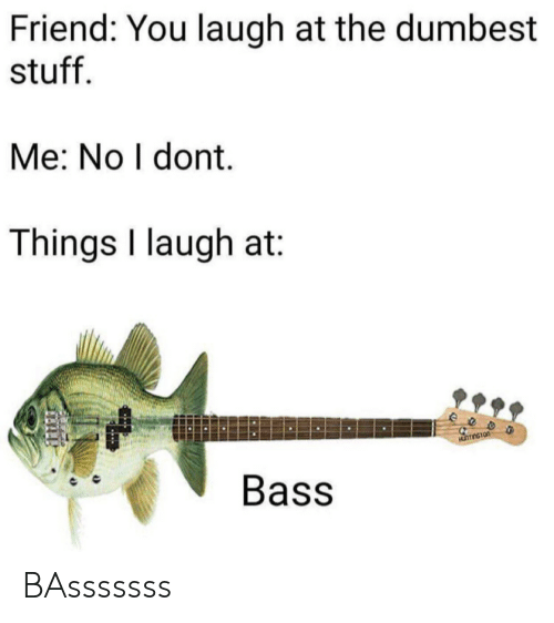 dumbest: Friend: You laugh at the dumbest  stuff  Me: No I dont.  Things I laugh at  eeo  Bass BAsssssss