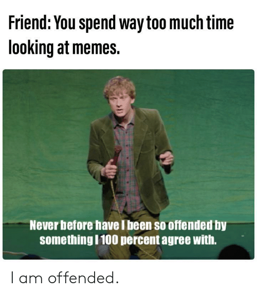 too-much-time: Friend: You spend way too much time  looking at memes.  Never before have I been so offended by  somethingI100 percent agree with. I am offended.