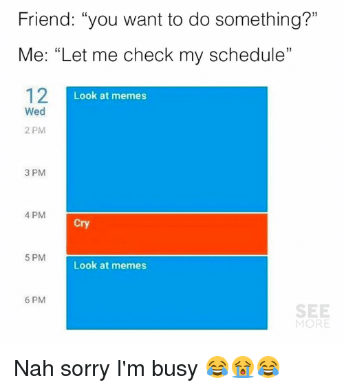 "Dank, Memes, and Sorry: Friend: ""you want to do something?""  Me: ""Let me check my schedule""  12I  1)  Look at memes  Wed  2 PM  3 PM  4 PM  Cry  5 PM  Look at memes  6 PM  SEE  MORE Nah sorry I'm busy 😂😭😂"