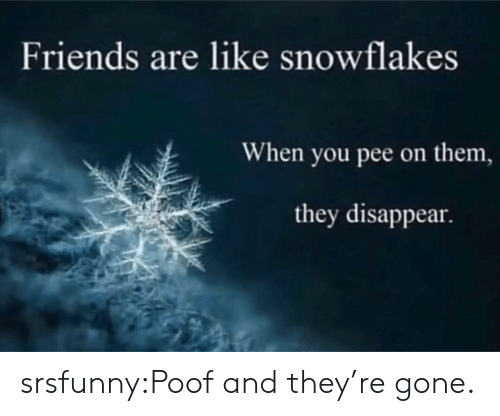 Friends, Tumblr, and Blog: Friends are like snowflakes  When you pee on them,  they disappear. srsfunny:Poof and they're gone.