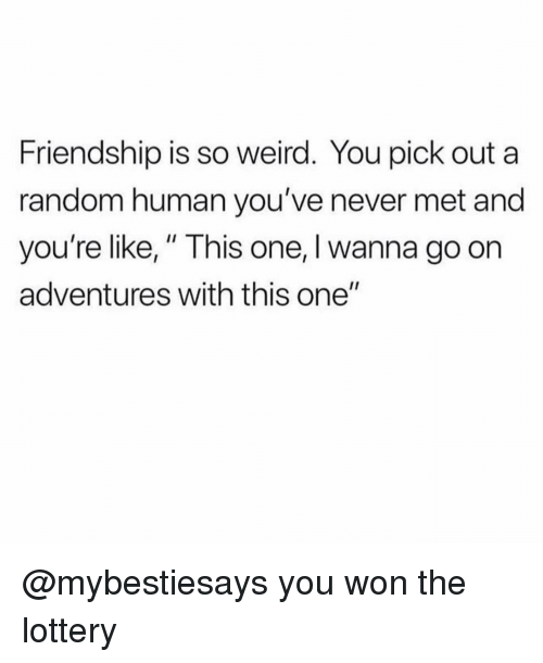 """Lottery, Weird, and Girl Memes: Friendship is so weird. You pick out a  random human you've never met and  you're like,"""" This one, I wanna go on  adventures with this one"""" @mybestiesays you won the lottery"""