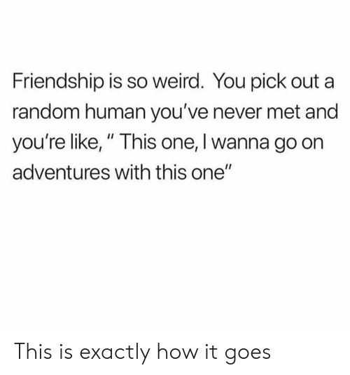 "Dank, Weird, and Friendship: Friendship is so weird. You pick out a  random human you've never met and  you're like,"" This one, I wanna go on  adventures with this one"" This is exactly how it goes"