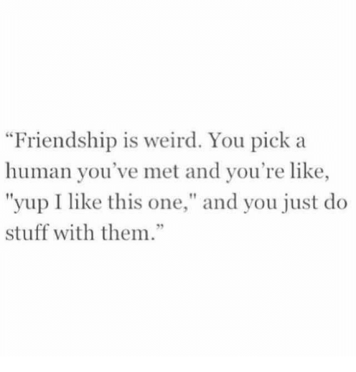 "Weird, Stuff, and Friendship: Friendship is weird. You pick a  human you've met and you're like,  ""yup I like this one,"" and you just do  stuff with them.""  92"