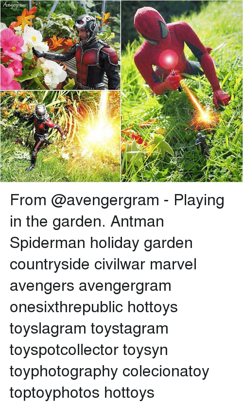 Memes, Antman, and Avengers: From @avengergram - Playing in the garden. Antman Spiderman holiday garden countryside civilwar marvel avengers avengergram onesixthrepublic hottoys toyslagram toystagram toyspotcollector toysyn toyphotography colecionatoy toptoyphotos hottoys