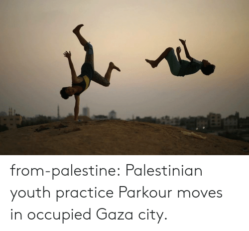 palestinian: from-palestine:   Palestinian youth practice Parkour moves in occupied Gaza city.