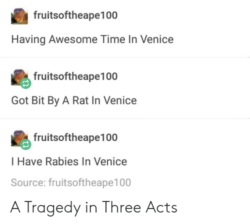 Time, Awesome, and Got: fruitsoftheape100  Having Awesome Time In Venice  fruitsoftheape100  Got Bit By A Rat In Venice  fruitsoftheape100  I Have Rabies In Venice  Source: fruitsoftheape100 A Tragedy in Three Acts