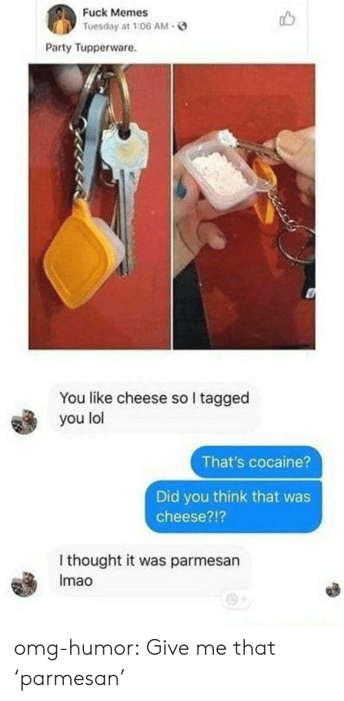 Lol, Memes, and Omg: Fuck Memes  Tuesday at 1:06 AM  Party Tupperware.  You like cheese so I tagged  you lol  That's cocaine?  Did you think that was  cheese?!?  I thought it was parmesan  Imao omg-humor:  Give me that 'parmesan'