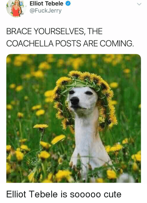 Coachella, Cute, and Ironic: @FuckJerry  BRACE YOURSELVES, THE  COACHELLA POSTS ARE COMING Elliot Tebele is sooooo cute