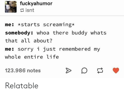 Life, Sorry, and Relatable: fuckyahumor  isnt  me starts screaming*  somebody: whoa there buddy whats  that all about?  me: sorry i just remembered my  whole entire life  123.986 notes Relatable