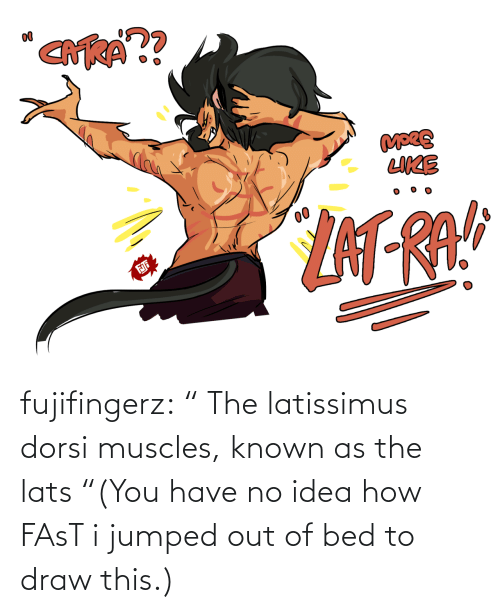 "Known: fujifingerz:    "" The latissimus dorsi muscles, known as the lats  ""(You have no idea how FAsT i jumped out of bed to draw this.)"