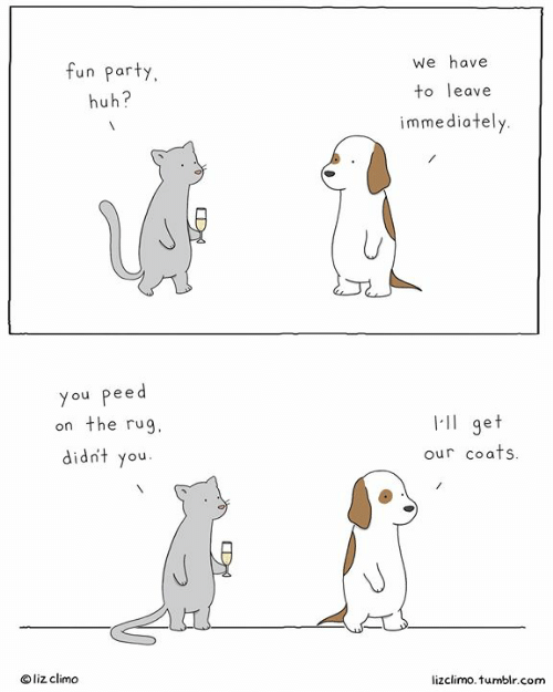 Huh, Memes, and Party: fun party  huh?  We have  to leave  immediately  you peed  on the rug  didnt you  l-ll get  our coafs  liz climo  lizclimo. tumblr.com