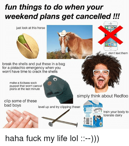 Weekend Plans: fun things to do when your  weekend plans get cancelled !!!  just look at this horse  dont text them  break the shells and put these in a bag  for a pistachio emergency when you  won t have time to crack the shells  make a kickass sock  puppet that wonrt cancel  plans at the last minute  simply think about Redfoo  clip some of these  bad boys  level up and try clipping these!  train your body to  tolerate dairy haha fuck my life lol ::--)))