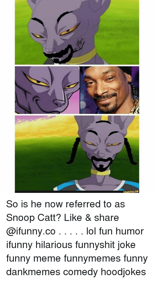 Snooping: funny.ce So is he now referred to as Snoop Catt? Like & share @ifunny.co . . . . . lol fun humor ifunny hilarious funnyshit joke funny meme funnymemes funny dankmemes comedy hoodjokes