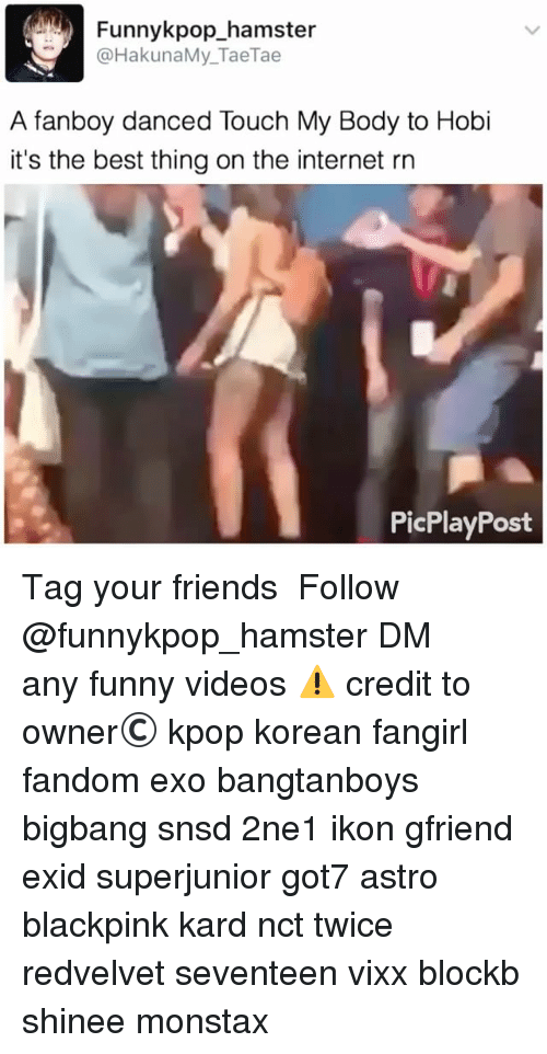 Friends, Funny, and Internet: Funnykpop_hamster  @HakunaMy_TaeTae  A fanboy danced Touch My Body to Hobi  it's the best thing on the internet rn  PicPlayPost 》Tag your friends 》》 Follow @funnykpop_hamster 》》》DM any funny videos ⚠ credit to owner© kpop korean fangirl fandom exo bangtanboys bigbang snsd 2ne1 ikon gfriend exid superjunior got7 astro blackpink kard nct twice redvelvet seventeen vixx blockb shinee monstax
