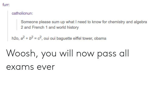 Obama, Tumblr, and Eiffel Tower: furr:  catholicnun:  Someone please sum up what I need to know for chemistry and algebra  2 and French 1 and world history  h20, a2+ b2 = c2, oui oui baguette eiffel tower, obama Woosh, you will now pass all exams ever