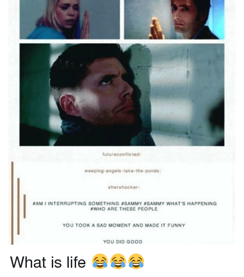 Funnyes: futur econflicted:  weeping angels-take the ponds:  sher shocker:  SAMI INTERRUPTING SOMETHING SAMMY ASAMMY WHAT'S HAPPENING  BWHO ARE THESE PEOPLE  YOU TOOK A SAD MOMENT AND MADE IT FUNNY  YOU DID GOOD What is life 😂😂😂