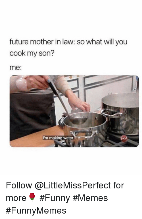 Funny, Future, and Memes: future mother in law: so what will you  cook my son?  me:  I'm making water. Follow @LittleMissPerfect for more🌹 #Funny #Memes #FunnyMemes