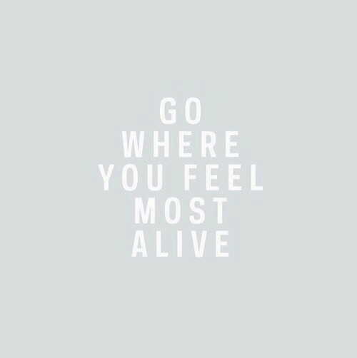Alive, You, and Feel: G O  WHERE  YOU FEEL  MOST  ALIVE  0