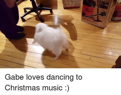 Dancing, Dank, and Music: Gabe loves dancing to Christmas music :)