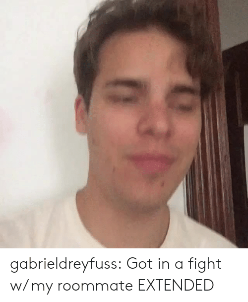 Roommate, Tumblr, and Blog: gabrieldreyfuss: Got in a fight w/ my roommate EXTENDED