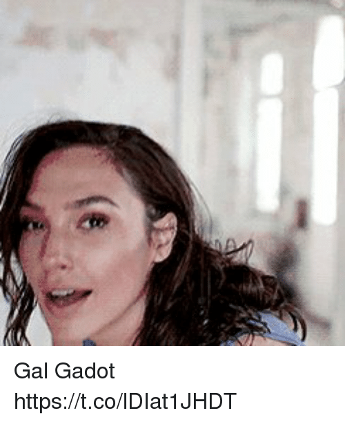 Gal Gadot, Https, and Gal: Gal Gadot https://t.co/lDIat1JHDT