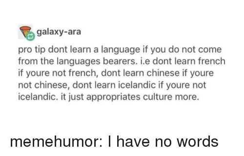 Tumblr, Blog, and Chinese: galaxy-ara  pro tip dont learn a language if you do not come  from the languages bearers. i.e dont learn french  if youre not french, dont learn chinese if youre  not chinese, dont learn icelandic if youre not  icelandic. it just appropriates culture more. memehumor:  I have no words