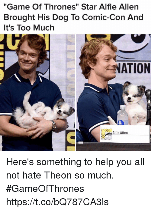 "Game of Thrones, Memes, and Too Much: ""Game Of Thrones"" Star Alfie Allen  Brought His Dog To Comic-Con And  It's Too Much  NATION  Alfie Allen Here's something to help you all not hate Theon so much. #GameOfThrones https://t.co/bQ787CA3ls"