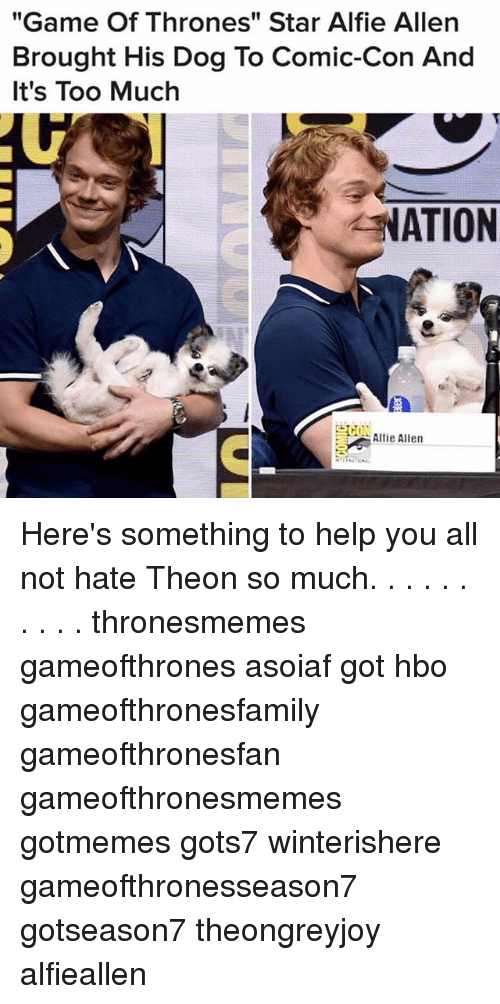 "Game of Thrones, Hbo, and Memes: ""Game Of Thrones"" Star Alfie Allen  Brought His Dog To Comic-Con And  It's Too Much  ATION  Alli Allen  CI Here's something to help you all not hate Theon so much. . . . . . . . . . thronesmemes gameofthrones asoiaf got hbo gameofthronesfamily gameofthronesfan gameofthronesmemes gotmemes gots7 winterishere gameofthronesseason7 gotseason7 theongreyjoy alfieallen"