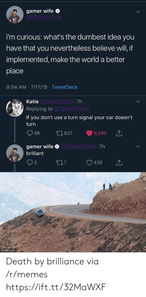 Memes, Death, and World: gamer wife  i'm curious: what's the dumbest idea you  have that you nevertheless believe will, if  implemented, make the world a better  place  9:54 AM 7/17/19 TweetDeck  Katie  -7h  Replying to  If you don't use a turn signal your car doesn't  turn  98  t937  9,296  gamer wife  brilliant  7h  3  17  436  imgflip.com Death by brilliance via /r/memes https://ift.tt/32MaWXF