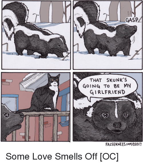 Love, Girlfriend, and Skunks: GASP  THAT SKUNK'S  GOING To BE MY  GIRLFRIEND  FALSEKNEES.CoMO2017 Some Love Smells Off [OC]