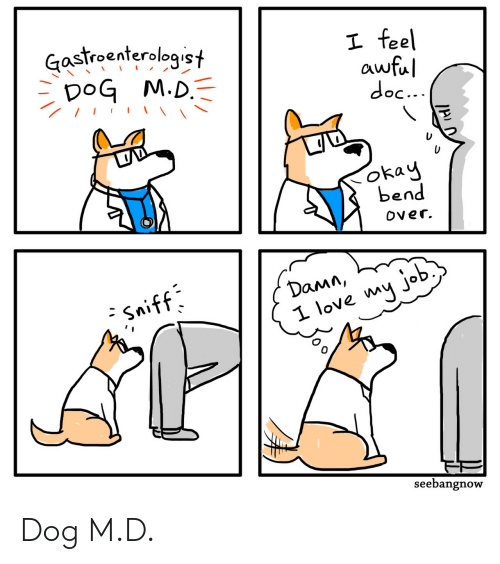 Love, Okay, and Bend Over: Gastroenterologist  DoG M.D.  I feel  awful  doc...  okay  bend  Over.  Damn,  - Sniff  I love my job  seebangnow Dog M.D.
