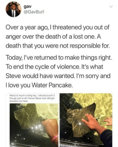 Love, Memes, and Petty: gav  @GavBurl  Over a year ago, I threatened you out of  anger over the death of a lost one. A  death that you were not responsible for.  Today, l've returned to make things right.  To end the cycle of violence. It's what  Steve would have wanted. I'm sorry and  I love you Water Pancake.  About to touch a sting ray..I shouid punch t  though just to let it know Steve Inwin still got  shooters out here  PETTY  MEMES