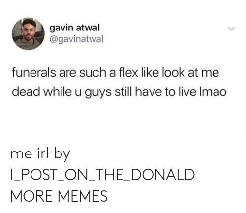 gavin: gavin atwal  @gavinatwal  funerals are such a flex like look at me  dead while u guys still have to live Imao me irl by I_POST_ON_THE_DONALD MORE MEMES