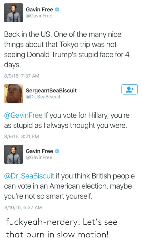 Electioneer: Gavin Free  @GavinFree  Back in the US. One of the many nice  things about that Tokyo trip was not  seeing Donald Trump's stupid face for 4  days  8/9/16, 7:37 AM   SergeantSeaBiscuit  @Dr_SeaBiscuit  @GavinFree lf you vote for Hillary, you're  as stupid as I always thought you were.  8/9/16, 3:21 PM   Gavin Free  @GavinFree  @Dr_SeaBiscuit if you think British people  can vote in an American election, maybe  you're not so smart yourself.  8/10/16, 6:37 AM fuckyeah-nerdery: Let's see that burn in slow motion!