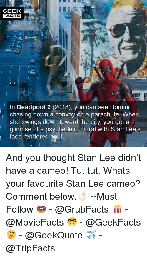 Facts, Memes, and Stan: GEEK  FACTS  In Deadpool 2 (2018), you can see Domino  chasing down a convoy on a parachute. when  she swings down toward the city, you get a  glimpse of a psychedelic mural with Stan Lee's  Tace rendered on it And you thought Stan Lee didn't have a cameo! Tut tut. Whats your favourite Stan Lee cameo? Comment below.👌🏻 --Must Follow 🍩 - @GrubFacts 🍿 - @MovieFacts 🤓 - @GeekFacts 🤔 - @GeekQuote ✈️ - @TripFacts