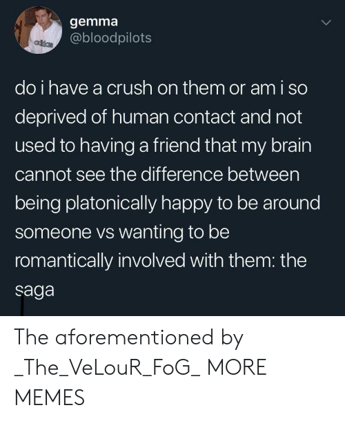 Crush, Dank, and Memes: gemma  @bloodpilots  adias  do i have a crush on them or am i so  deprived of human contact and not  used to having a friend that my brain  cannot see the difference between  being platonically happy to be around  someone vs wanting to be  romantically involved with them: the  saga The aforementioned by _The_VeLouR_FoG_ MORE MEMES