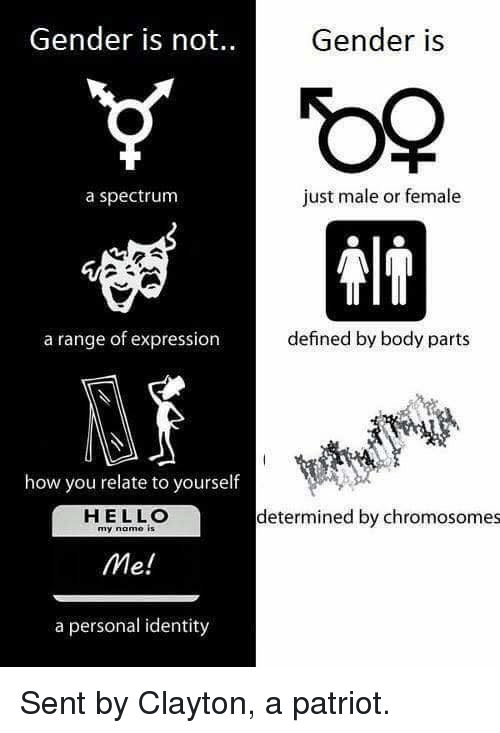 Hello, Memes, and 🤖: Gender is not.  Gender is  a spectrum  just male or female  a range of expression  defined by body parts  how you relate to yourself  HELLO  my name is  determined by chromosomes  Me!  a personal identity Sent by Clayton, a patriot.